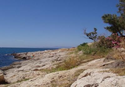 Από την καθαριότητα στα βράχια της Πειραϊκής ως τη διεκδίκηση του Δήμου Πειραιά στο Παλατάκι - Τα ανοιχτά ζητήματα της Α' Δημοτικής Κοινότητας.